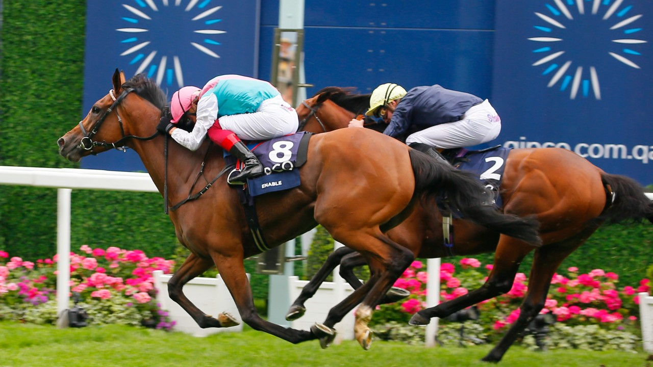 King george stakes betting websites curraheen park betting on sports
