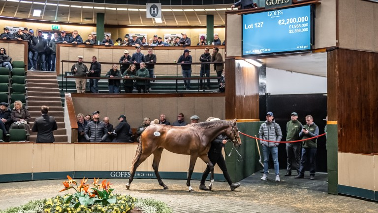 The re-established Goffs Million will take place on the eve of the Goffs Orby Sale in 2022