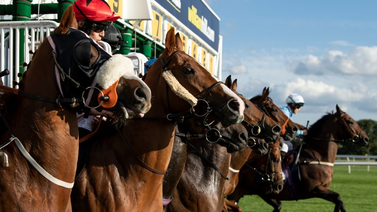 Cutting back: field sizes will be smaller under BHA resumption plans