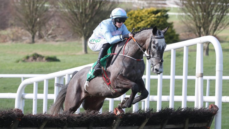 Raya Time: got off the mark over fences last time