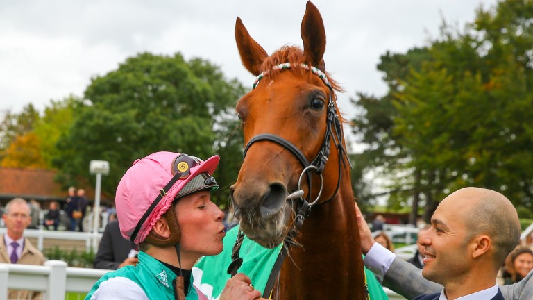 Quadrilateral: set to visit Dubawi for her maiden covering