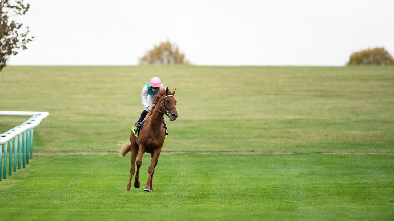 Quadrilateral caps a big week for Frankel with Group 1 winner number ten