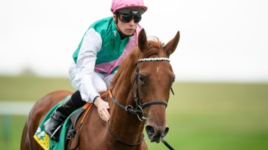 Quadrilateral: the long-time ante-post favourite for the QIPCO 1,000 Guineas