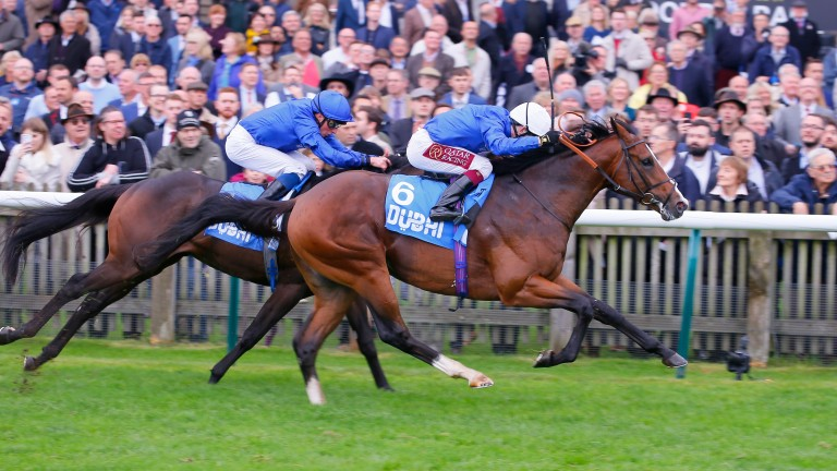 Military March (near side) will not run in next week's Investec Derby