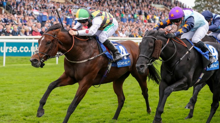 Gulliver (left): has a superb record at York