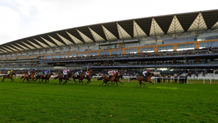 Jumpers pass the stands on the inner track last winter. The course could be used for Champions Day if the bad weather continues