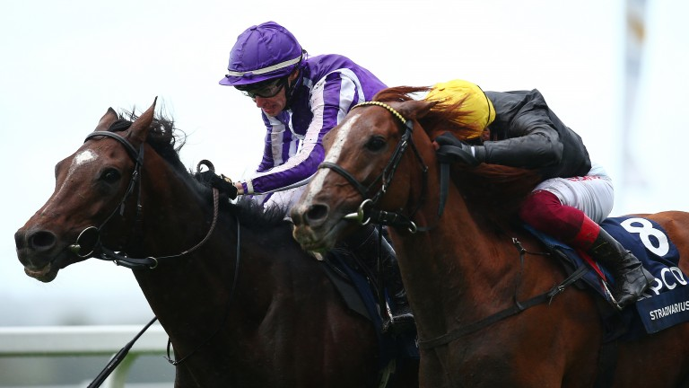 Kew Gardens (left) beat Stradivarius by a nose in a thrilling finish to the Long Distance Cup