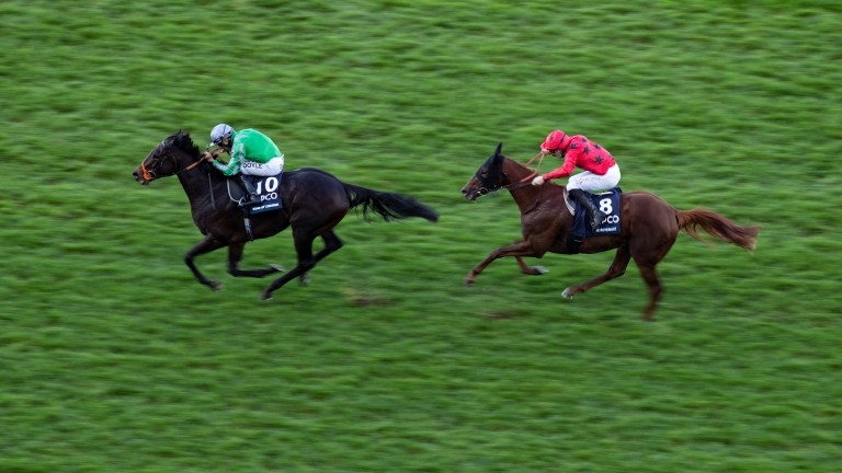King Of Change: beat The Revenant to win the QEII Stakes at Ascot last year