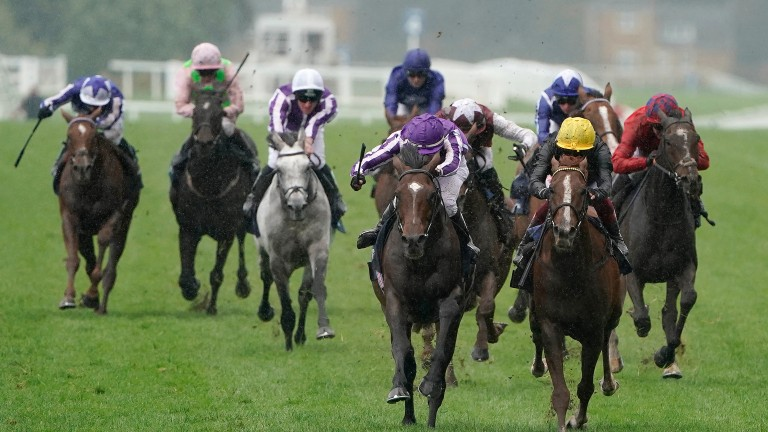 Kew Gardens (left): denies Stradivarius in a gripping Long Distance Cup tussle
