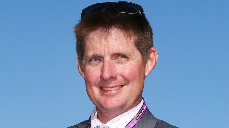 Jarrod McLean: charged with using electric shocks on Melbourne Cup runner Red Cardinal