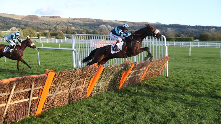 Subsequent Supreme Novices' runner-up Thomas Darby (Richard Johnson) makes a good impression in last year's maiden hurdle