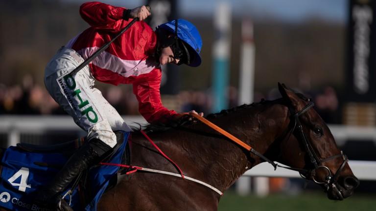 A Plus Tard: spectacular Cheltenham Festival winner could return at Navan on Sunday