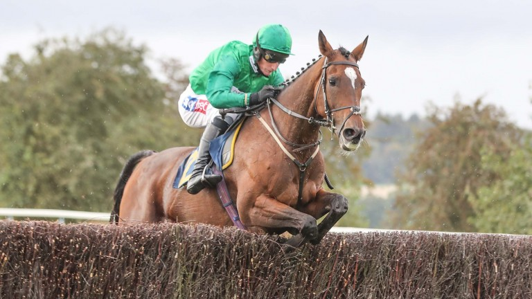 Wholestone (Daryl Jacob) won the Timothy Hardie Novices' Chase at Perth for Nigel Twiston-Davies in 2019