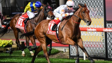 Loving Gaby ridden by Craig Williams wins the Ladbrokes Manikato Stakes at Moonee Valley Racecourse on October 25, 2019 in Moonee Ponds, Australia. (Pat Scala/Racing Photos)