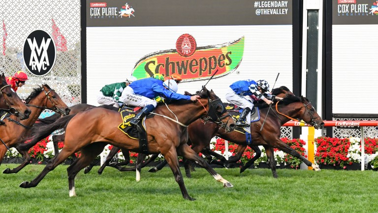 Chief Ironside: narrow winner of the Schweppes Crystal Mile