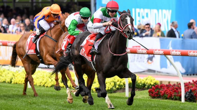 Lys Gracieux: daughter of Heart's Cry won the 2019 Cox Plate