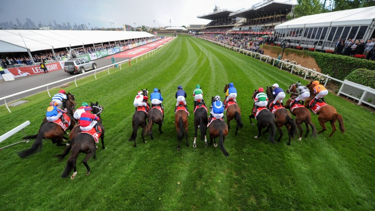 The centenary Cox Plate could be postponed until next year