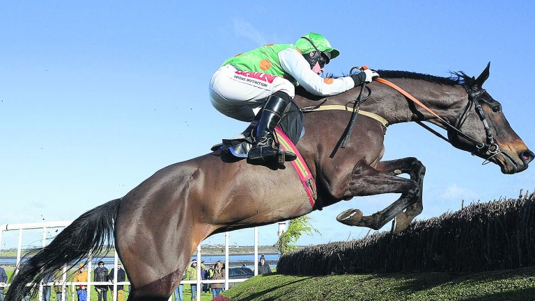 Dlauro: has an exciting future after winning his point and bumper in style