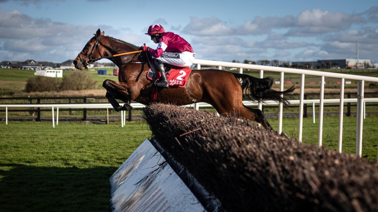 Battleoverdoyen: takes a fence on his way to victory at Galway