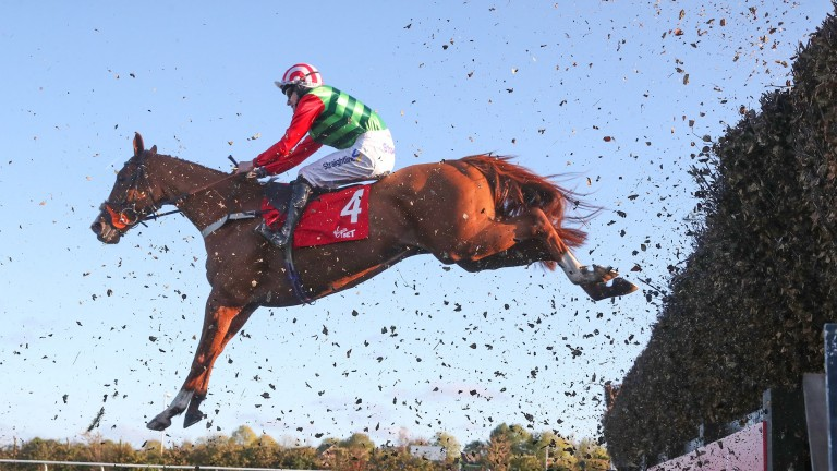 Forest Bihan: set to bid for back-to-back wins in the Old Roan Chase at Aintree