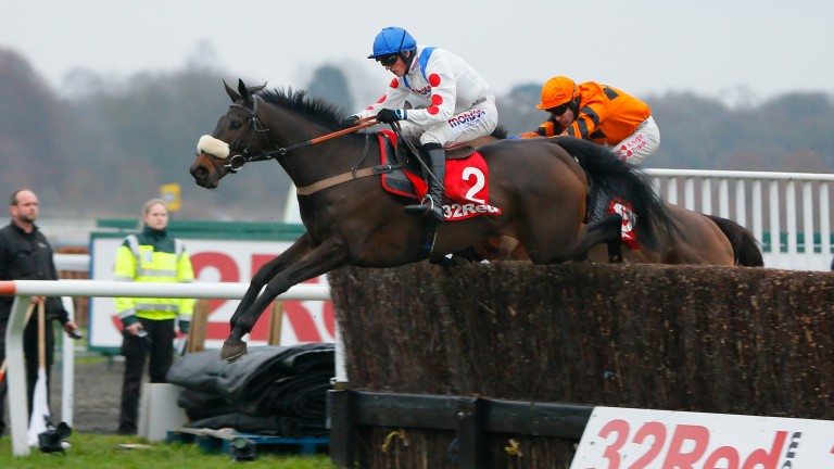 Clan Des Obeaux: represents Paul Nicholls and Harry Cobden at Down Royal