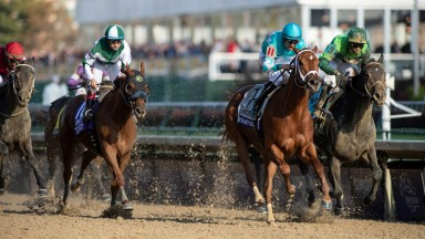 Monomoy Girl (Florent Geroux (2nd right) wins the DistaffChurchill Downs, Louisville 3.11.18Pic: Edward Whitaker