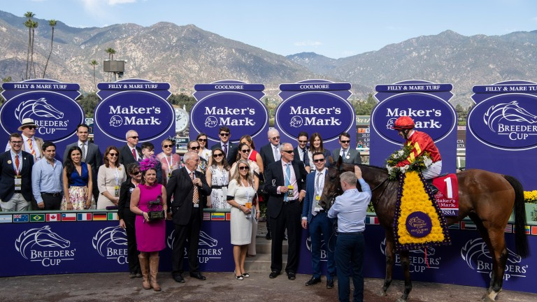 Iridessa: victorious for Joseph O'Brien in the Filly & Mare Turf