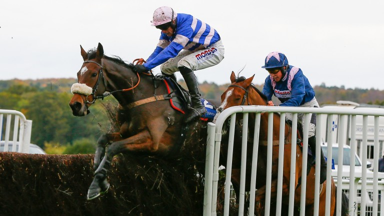 Diego Du Charmil: controversial winner at Ascot on Saturday