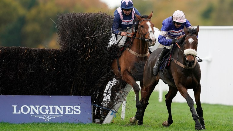 Capeland is taken out at the last by stablemate Diego Du Charmil at Ascot last year