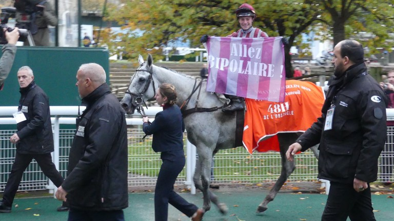Bipolaire: the Francois Nicolle-trained grey is a top Grand Steeple-Chase de Paris hope