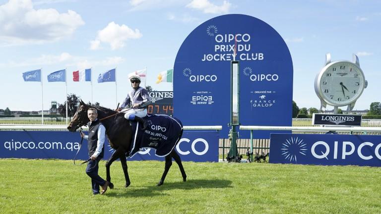 Study Of Man: Prix du Jockey Club winner and Lanwades stallion