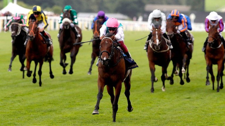 Calyx storms clear of the opposition in the Coventry Stakes