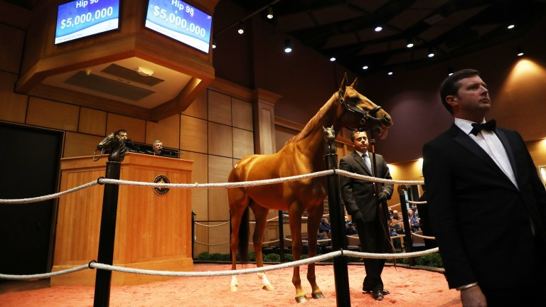 Sale-topper Blue Prize in the ring as the bid board reaches $5 million