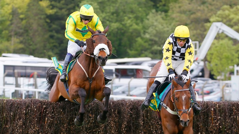 The Young Master (left) could return to Wincanton