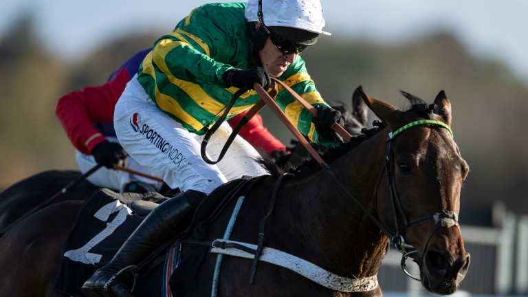 Barry Geraghty hopes Champ can make it three out of three over fences