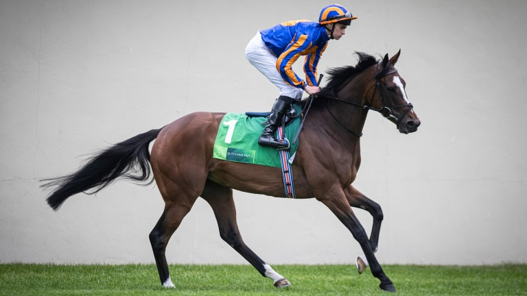 Magic Wand: tried to make all under Ryan Moore