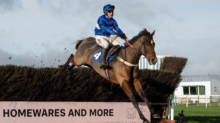 Reserve Tank wins the Rising Stars Novices' Chase