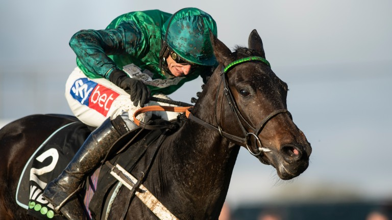 Fusil Raffles will have a racecourse gallop rather than run in the rescheduled Kingwell Hurdle