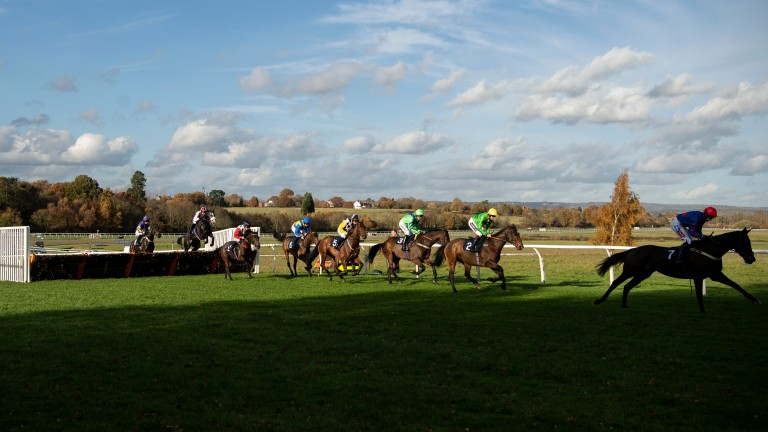 Lingfield: survived morning inspection for today's jumps meeting