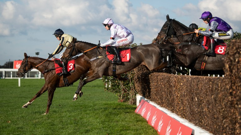 Champagne Court: impressed at Sandown earlier this month