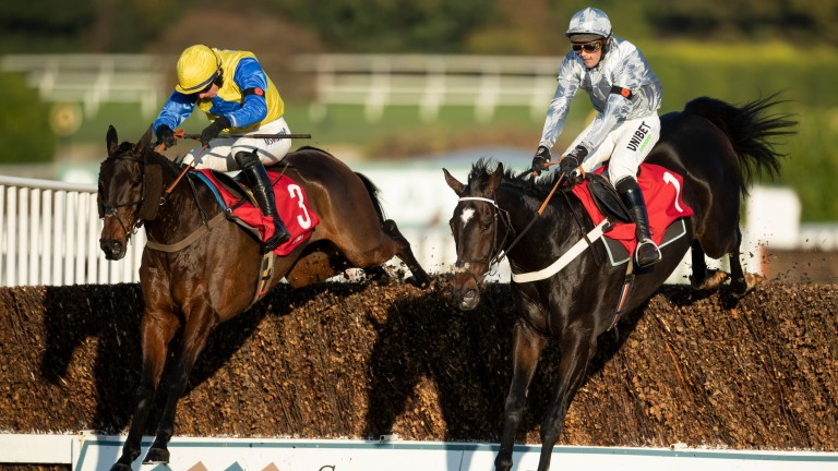 Santini (right): leading chaser had been due to run at Cheltenham