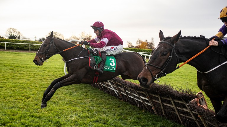 Abacadabras: joins stablemate Envoi Allen in the Royal Bond