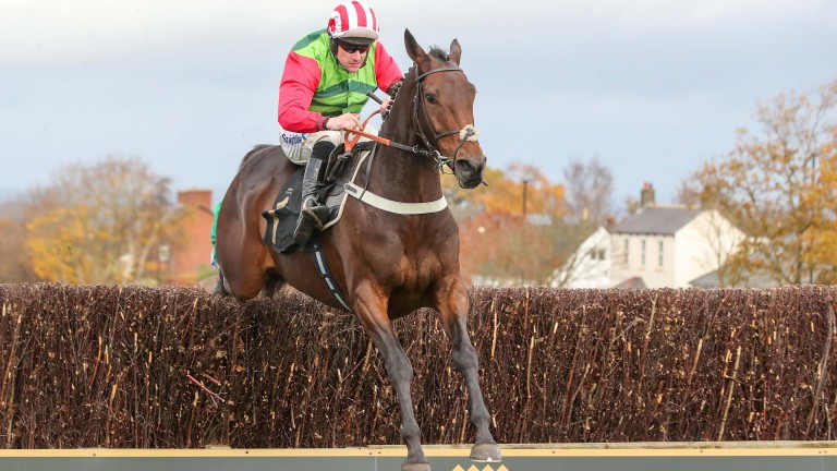 Windsor Avenue: puts his unbeaten chase record on the line