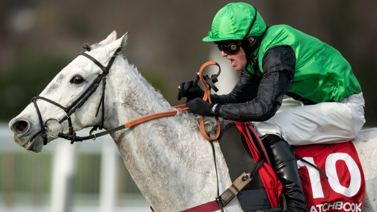 Commodore: has won three of his four starts over fences
