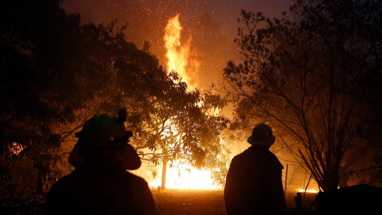 Bushfires continue to rage throughout New South Wales and Victoria