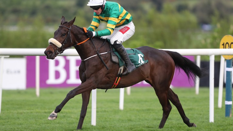 Gypsy Island: has recorded four wins from four bumper starts