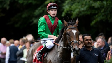 Spanish Mission: Team Valor's son of Noble Mission returns to the winner's enclosure after the Bahrain Trophy
