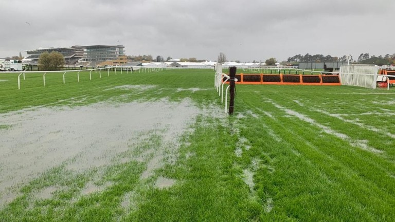 Cheltenham: the opening day of the November meeting has been cancelled