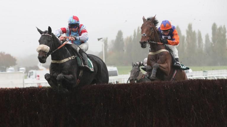 Saint Calvados (left) wins at Cheltenham earlier this season