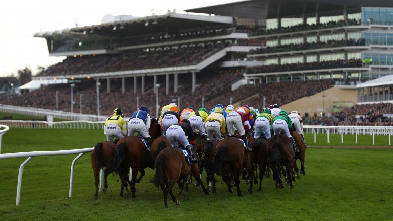 The Tote Guarantee will be available on course throughout the Cheltenham Festival